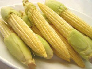 manfaat jagung muda
