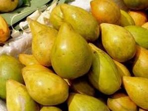 buah alkesa