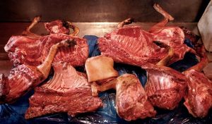 Health Benefits of Eating Dog Meat