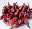 7 Manfaat Bawang Arab Untuk Penyakit dan Ramuan Herbal