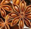 17 Manfaat Bunga Lawang untuk Kesehatan dan Kecantikan