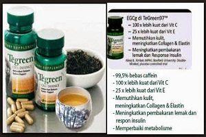 Bagi anda penggemar produk kesehatan berbeda jikalau anda melihat  13 Manfaat Tea Green Nu Skin untuk Kesehatan dan Kecantikan Kulit