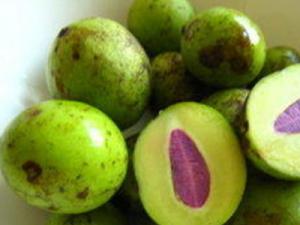 Ramania merupakan jenis tanaman orisinil Indonesia yang juga populer di beberapa negara lain  10 Manfaat Buah Ramania Dengan Rasa Manis Asam Sejuta Khasiat