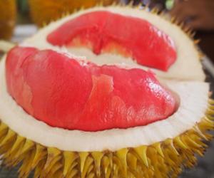 Manfaat Durian Merah