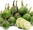 14 Manfaat Sayur Terong Hijau Untuk Kesehatan dan Penyakit Berbahaya