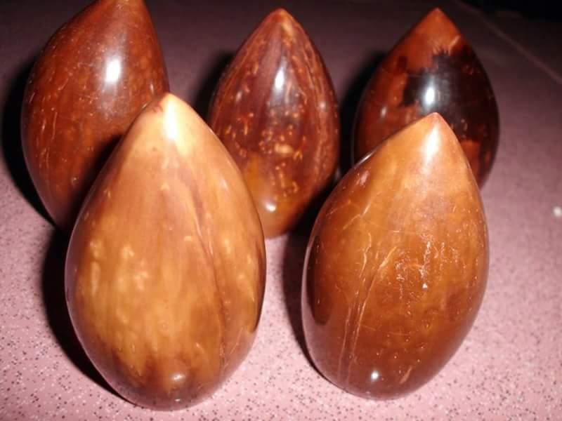 Manfaat kelapa arab