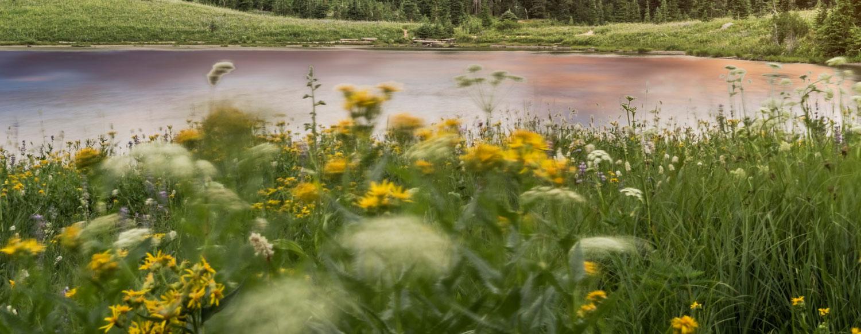 Volunteer Retirement Community in Lake Oswego Mary s Woods
