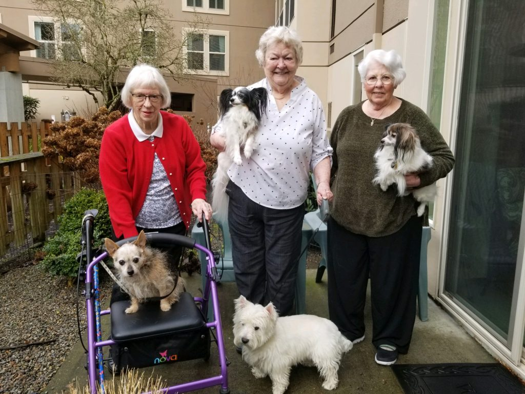 Members of the Dog Friendly Club