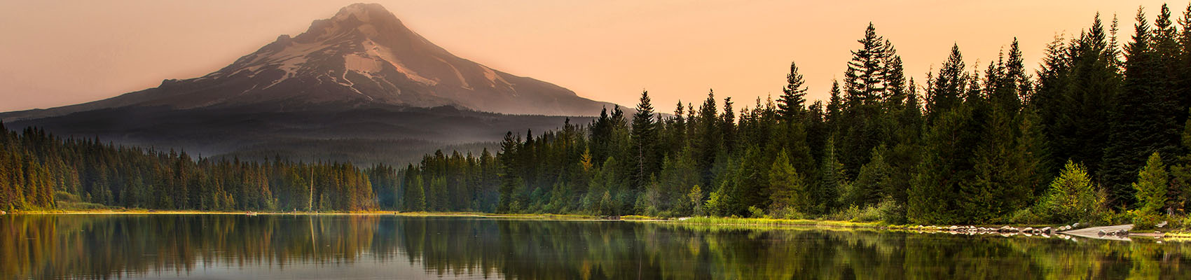 mountain behind a forest lake