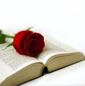 dia-del-libro-y-de-la-rosa
