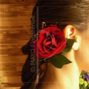 Tocado-Rosas
