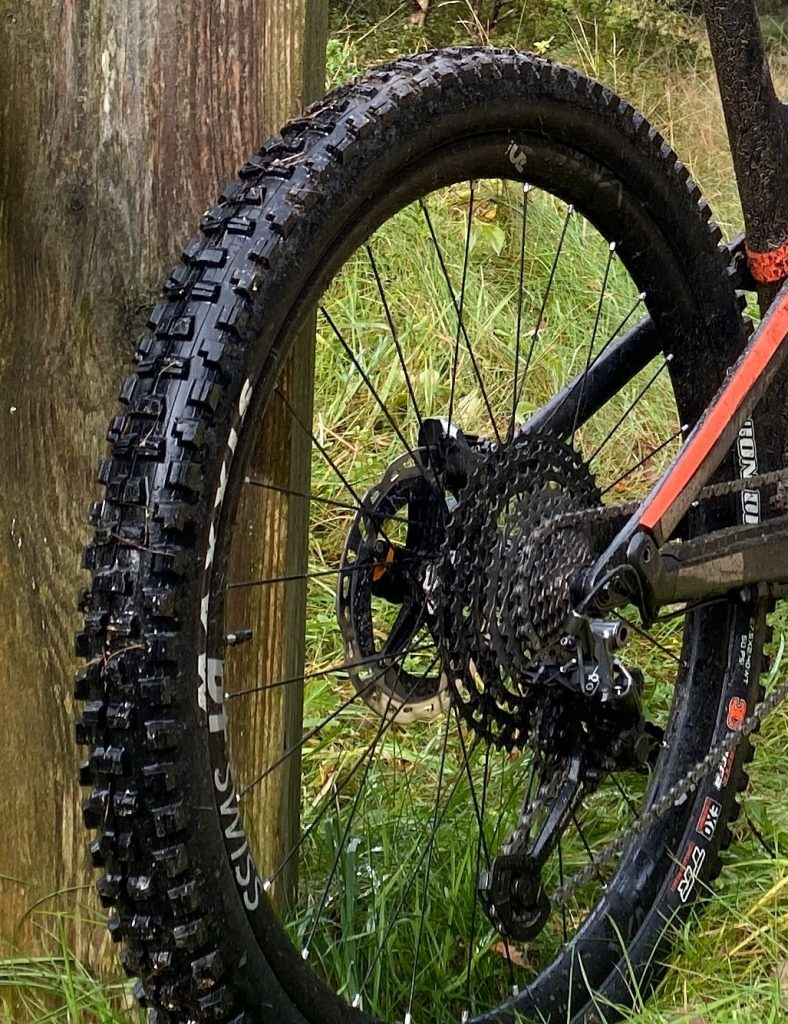 A fat bike riding through normal forest terrain showing the rear tire and rear derailleur
