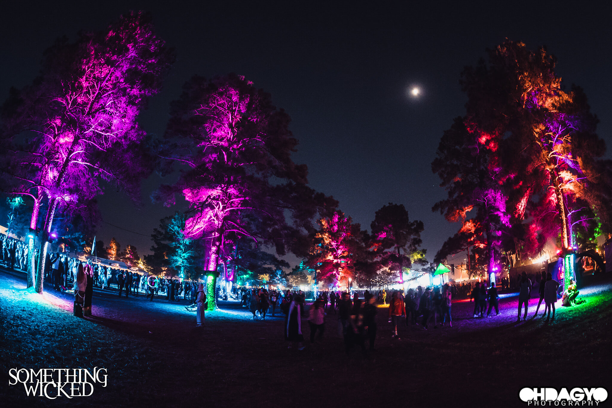 festival grounds lit up at night
