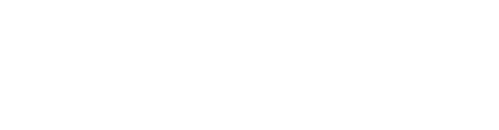 logo of Disco Donnie Presents