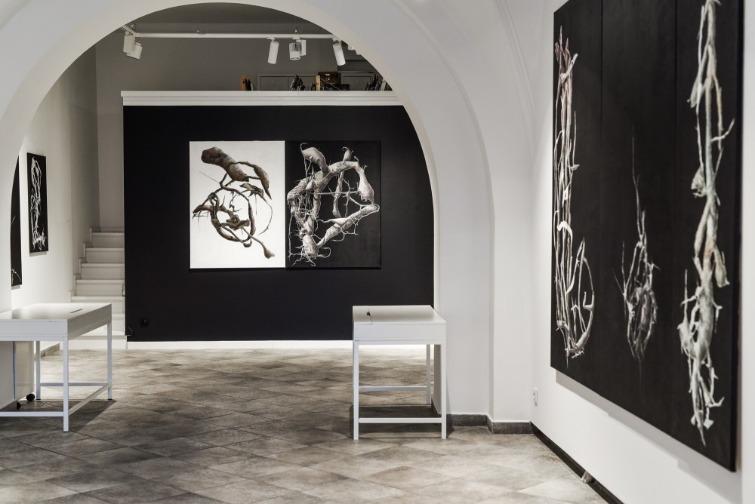 Mia ART GALLERY gehört zu den besten Galerien und Museen in Polen!