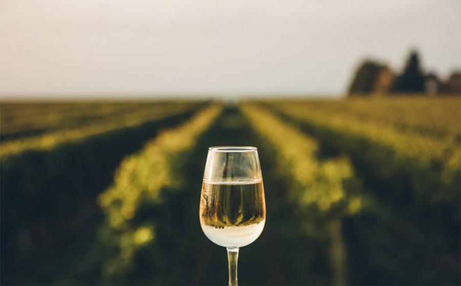Einladung zum Weinfestival am 08.10.2021