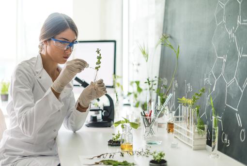 Biologielaborant_gesundheitsberufe.de.png