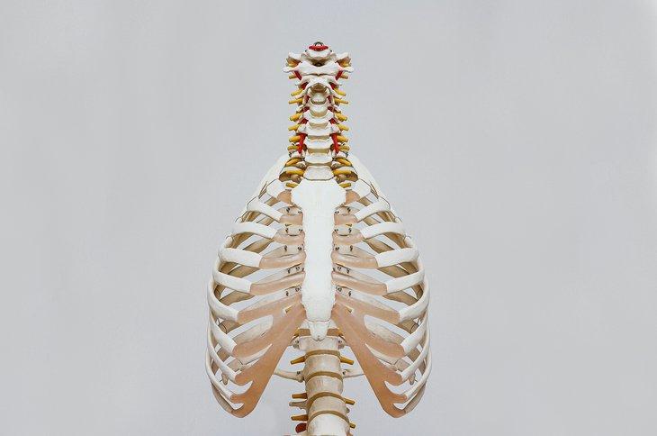 Osteopath.jpg