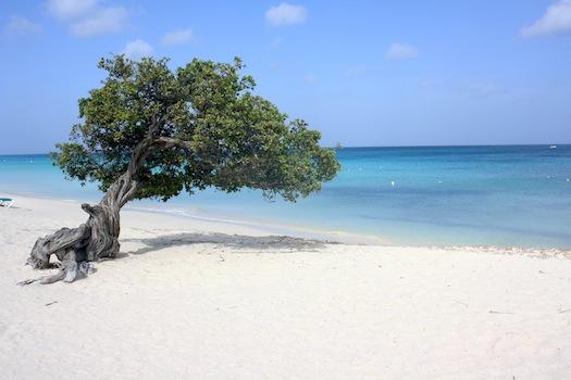 Uma das praias de Aruba