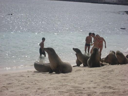 Galapagos2007--01--07-13-07