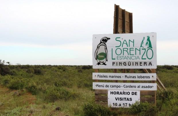 estacia-san-lorenzo