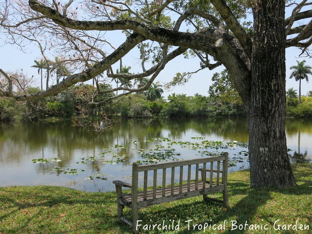 fairchild-botanic-garden-miami