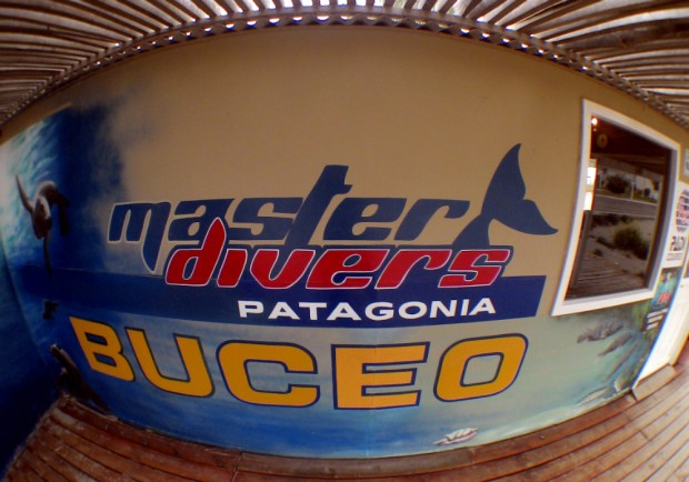 masters-divers-buceo
