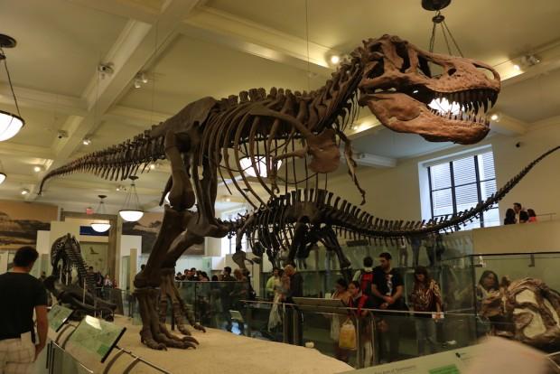 museu-nova-york2