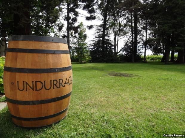 vinicola-undurraga-santiago-chile