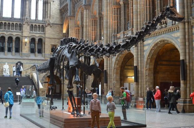 Museu da História Natural