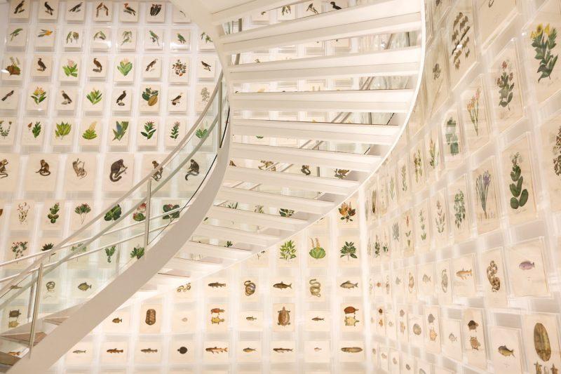 museus-sao-paulo