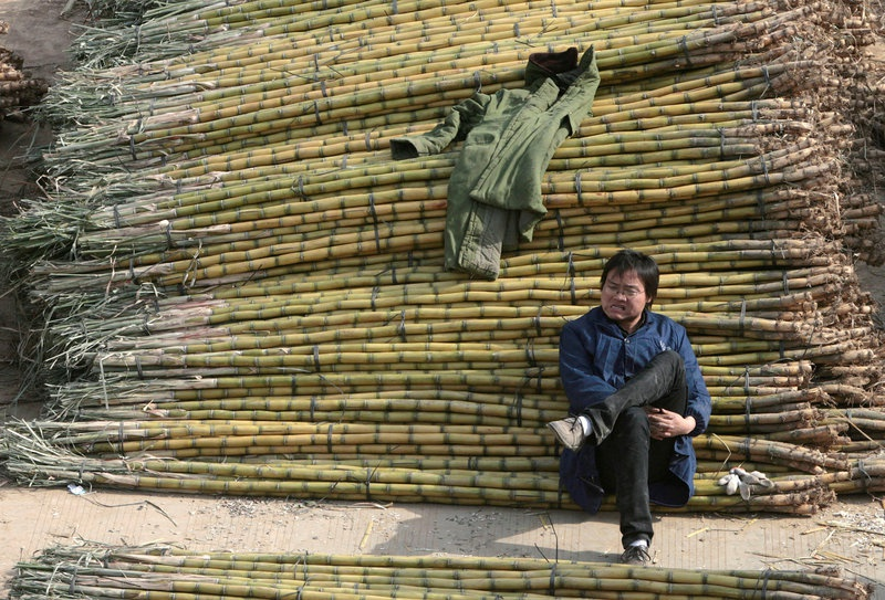 China slaps hefty import duties on sugar in victory for domestic industry