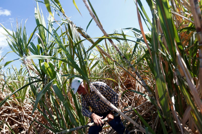 US, Mexico Near Sugar Pact Agreement