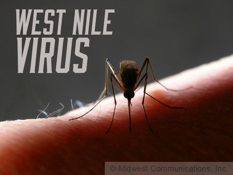 West Nile Positive in Mesquite