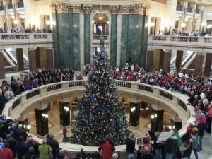 capitol christmas tree to feature americas dairyland theme news wsau