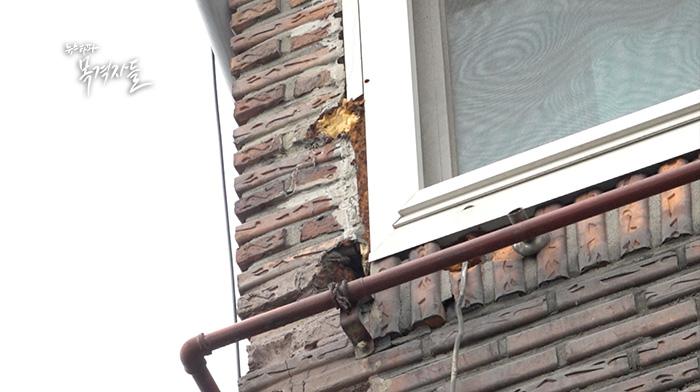 ▲ 지난 6월 23일 삼성전자 서비스센터 협력업체 소속 A/S 기사 진 모 씨가 건물 외벽에 있는 에어컨 실외기를 수리하던 중 창문안전대가 떨어지면서 추락해 숨졌다.