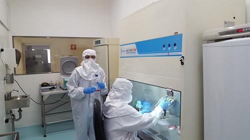 Instituto Biológico auxilia no diagnóstico da Covid-19