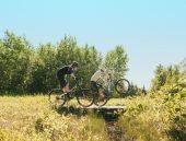 , Devinci Cycles – Django Carbon 29 (NX, GX, Frameset, and Aluminum Model)