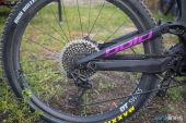 , BOLD Unplugged and OneUp Components Updates for 2018