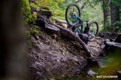 , Trans-Cascadia 2019 Recap + Videos