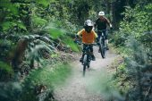 PNW Releases Fern Dropper Posts For Kids, PNW Releases Fern Dropper Posts For Kids