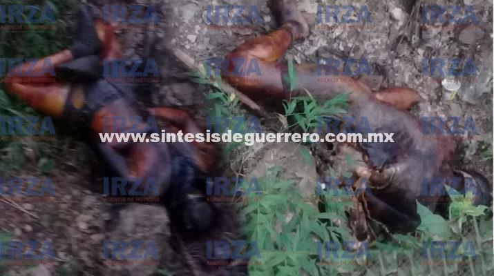 Hallan dos ejecutados putrefactos en camino rural de La Montaña