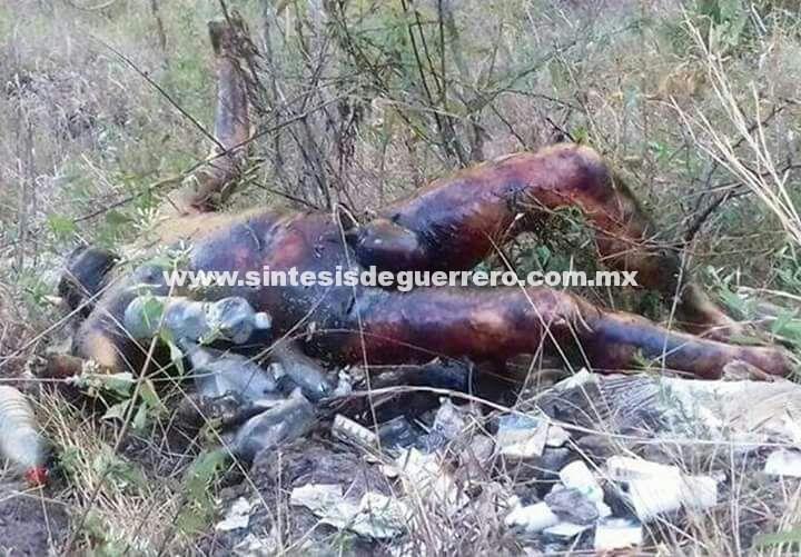 """Desmiente Astudillo existencia de 14 cuerpos en fosas de Copanatoyac; """"son menos"""", dice"""