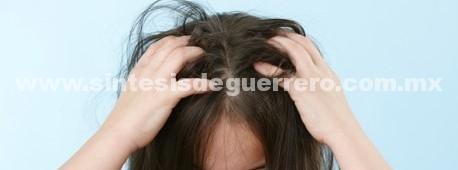 Revisión constante de cabello evita proliferación y contagio de peiculosis