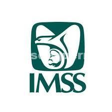 Sangrado uterino abundante puede tratarse de miomatosis. explica especialista del IMSS