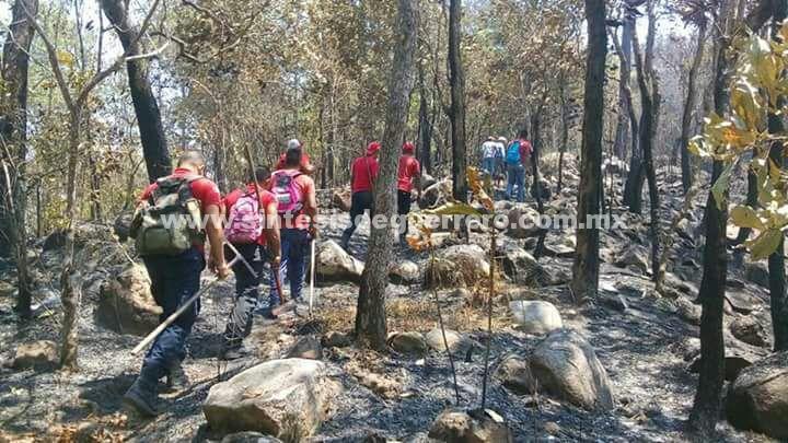 Incendio acaba con alrededor de 50 hectáreas en la sierra de Atoyac de Álvarez