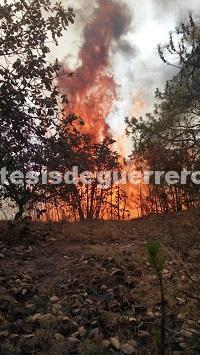 Mega incendio en Taxco ha consumido 300 hectáreas de bosque
