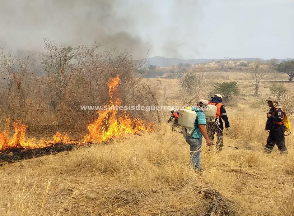 Registra Guerrero 12 incendios forestales activos, informa Protección Civil