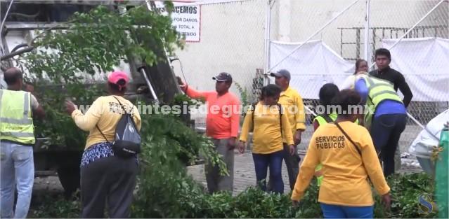 (Video) Supervisa Evodio acciones de limpieza en el puerto