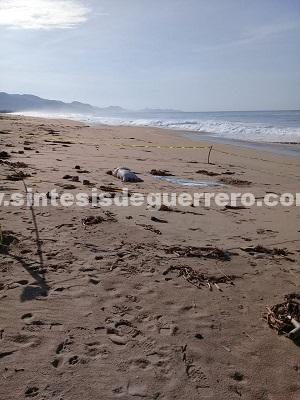 Aparece un hombre putrefacto en playa de Coyuca